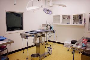 SurgeryRoom2
